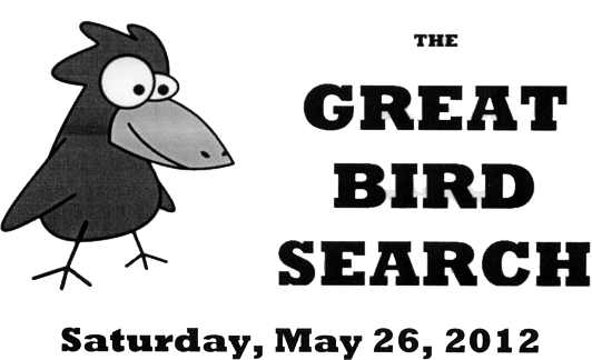 Great Bird Search